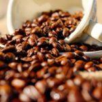 タイプ別おすすめコーヒーメーカー・淹れ方のコツや豆の選び方|マツコの知らない世界