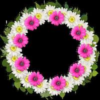 花の輪 花のち晴れ